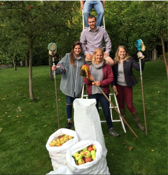 fruitcollect